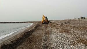 Limpieza algas playa Almassora